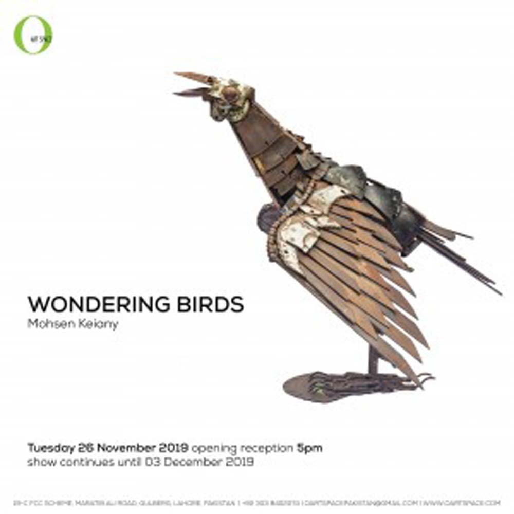 Wondering Birds